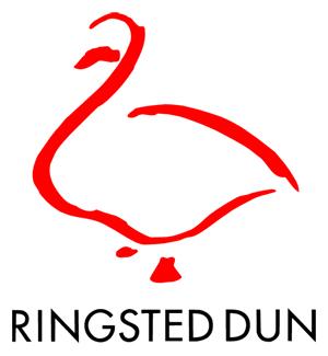 Besøg Ringsted Dun Hjemmeside